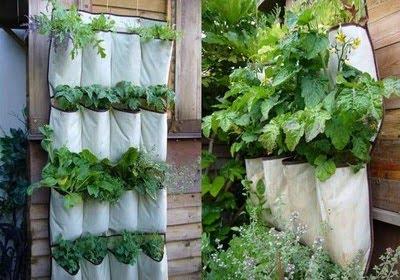 horta-vertical