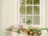 """Que teu olhar, flor na janela me faz…"""