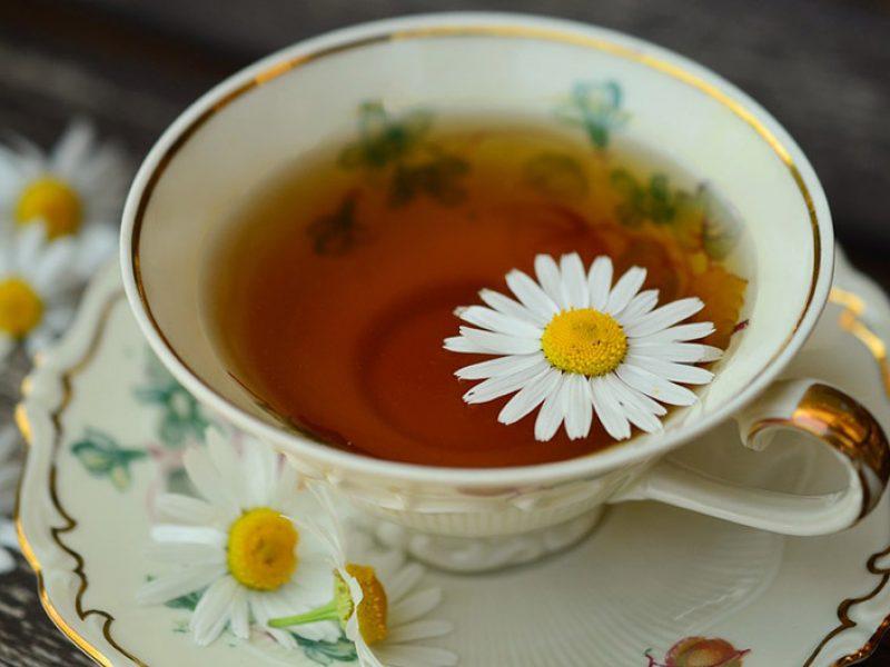 Tea Amo: Receitas de chás