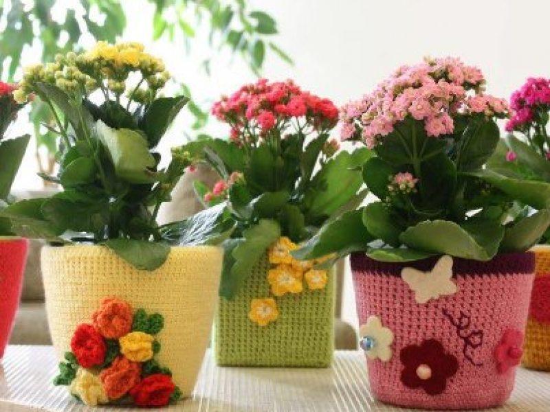 Cores e Flores do Crochê
