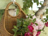 Detalhes Florais para alegrar nosso dia a dia