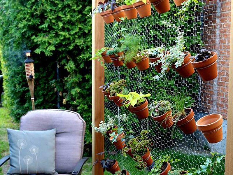 Jardim vertical – Como fazer