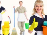 Empregada doméstica: recolhimento dos tributos e do FGTS