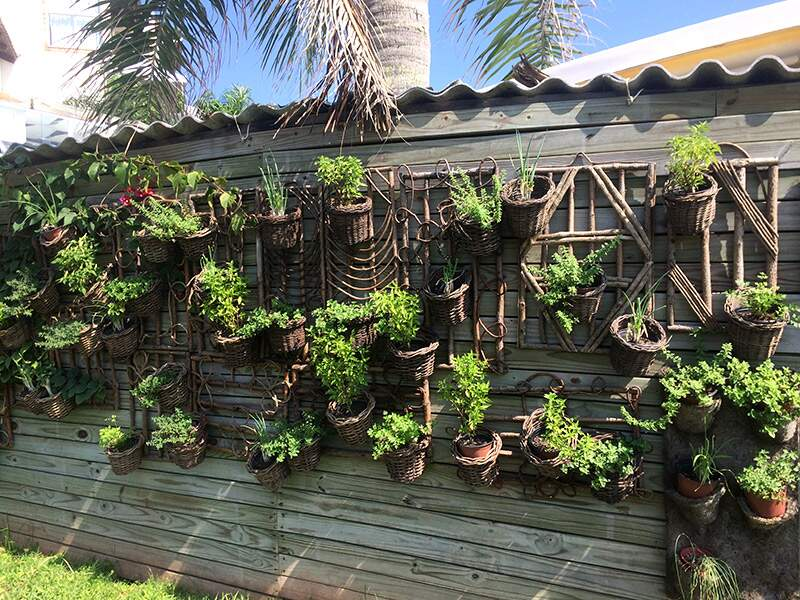 horta vertical