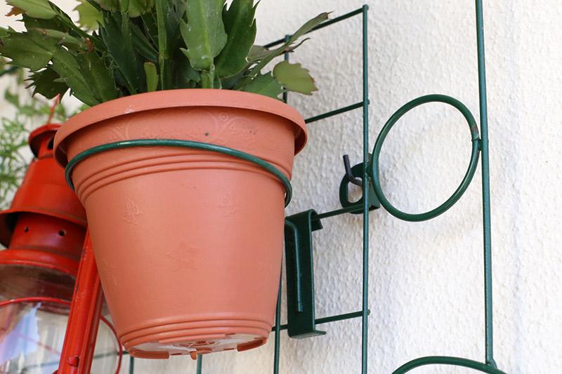 ganchos para pendurar plantas