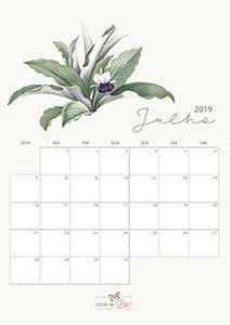 Calendário 2019 agosto