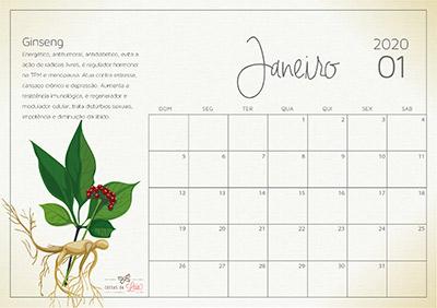 janeiro calendário 2020
