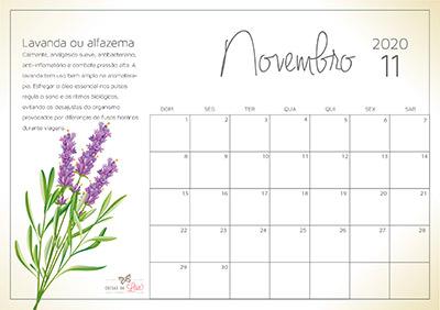 calendário 2020 novembro