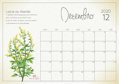 calendário 2020 dezembro