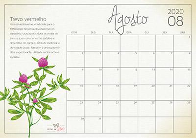 calendário 2020 agosto