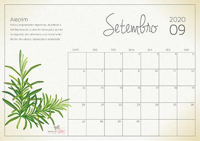 calendário 2020 setembro
