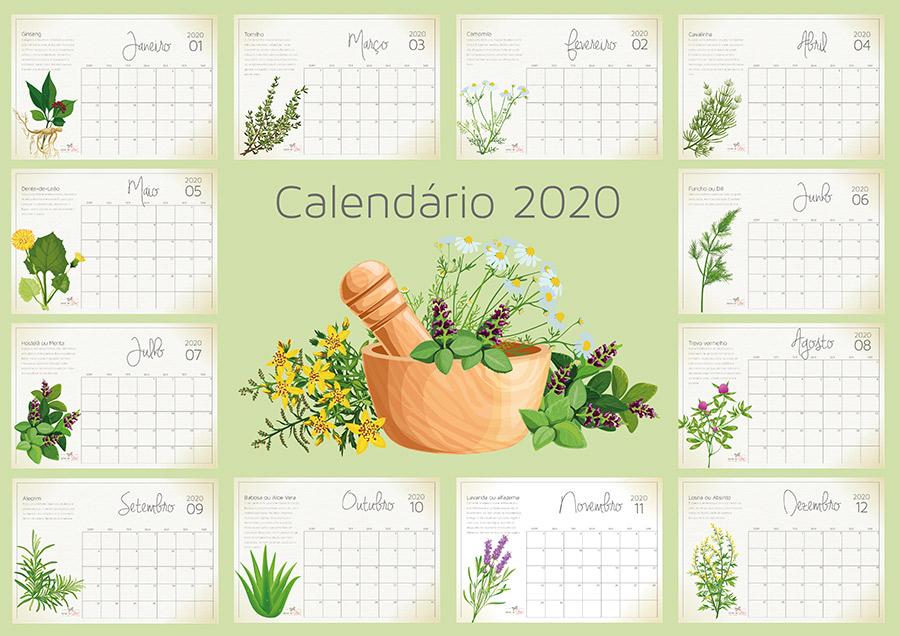 calendário para organização