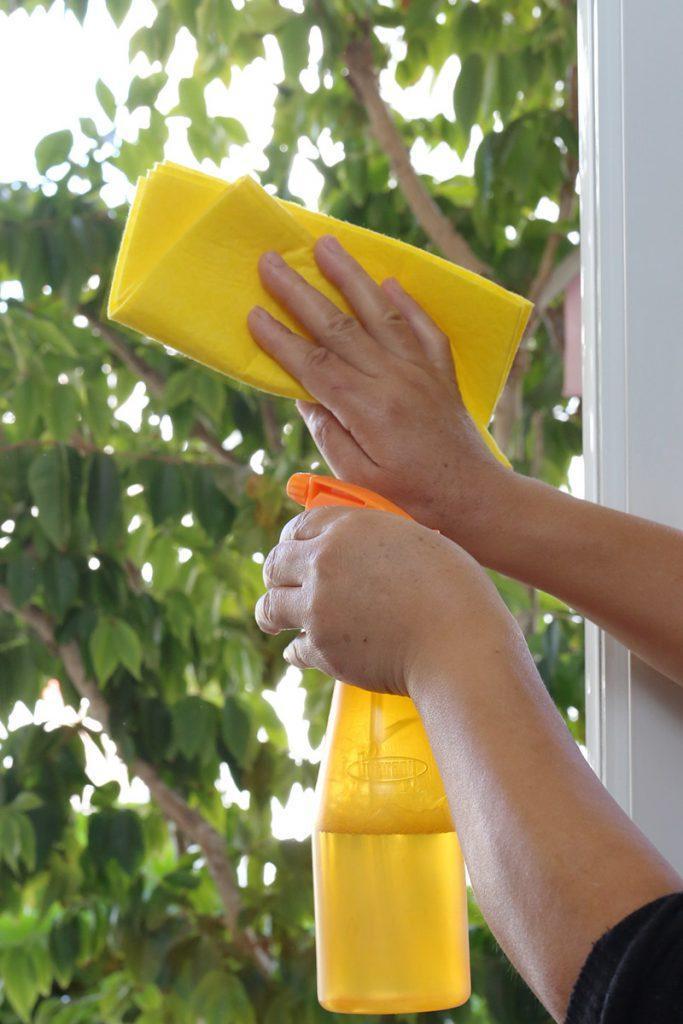 limpa-vidro caseiro